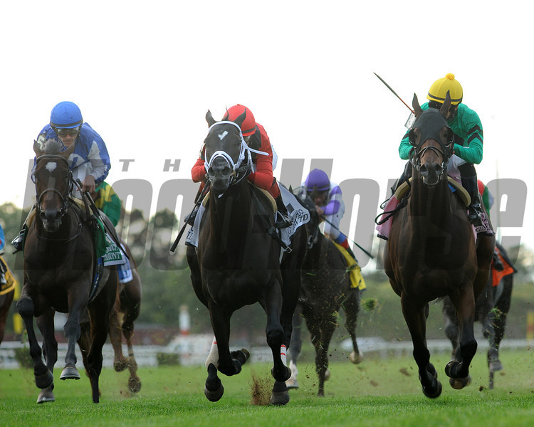 King David wins the 2012 Jamaica.<br /> Coglianes Photos
