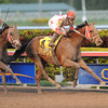 Parent's Honor wins the 2012 Claiming Crown Jewel.<br /> Coglianese Photos