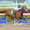 Dust and Diamonds wins the 2012 Sugar Swirl.<br /> Coglianese Photos/Courtney Heeney