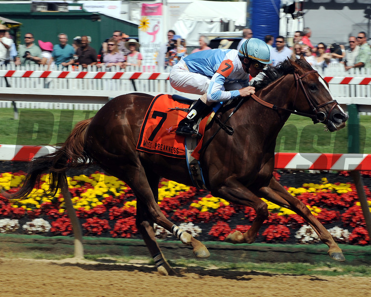 Agave Kiss wins the 2012 Miss Preakness Stakes.<br /> Photo by Dave Harmon