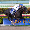 Take Charge Indy wins the 2012 Florida Derby.<br /> Coglianese Photos
