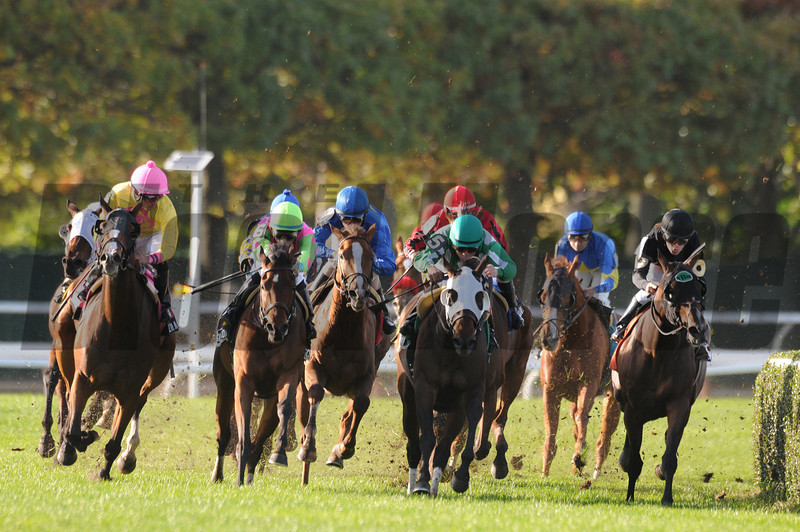 Hessonite wins the 2012 Ticonderoga.<br /> Coglianese Photos