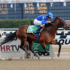 Saginaw wins the 2012 Fourstars Allstar Stakes<br /> Coglianese Photos