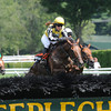 Spy in the Sky wins the 2012 A.P. Smithwick Memorial Handicap (NSA- I) Aug. 2 at Saratoga Race Course.<br /> Coglianese Photos