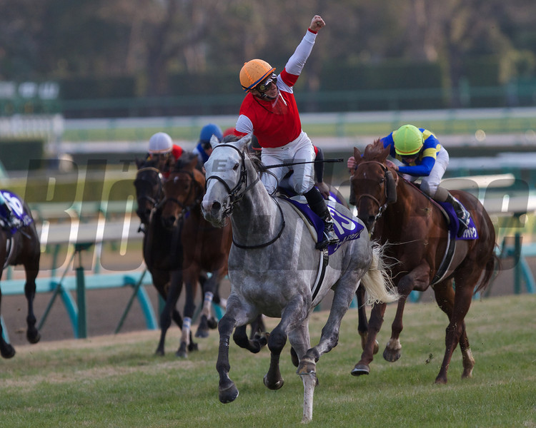 Gold Ship, with Hiroyuki Uchida in the irons, wins the Arima Kinen on December 23rd, 2012. Photo by Kate Hunter