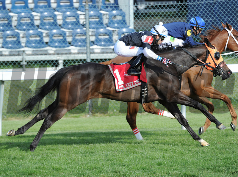 "Sensible Lady, Xavier Perez, wins the ""Very One Stakes"" Pimlico Race Track, Baltimore, MD 5/18/12, <br /> Photo by Mathea Kelley"