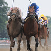 Teeth of the Dog wins the 2012 Dwyer.<br /> Coglianese Photos