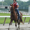 Dullahan - Belmont Park June 2, 2012.<br /> Coglianese Photos