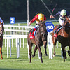 Racing from Leopardstown, 8/9/12 The Red Mills Irish Champion Stakes.<br /> Snow Fairy (centre) wins from Nathaniel (right) and Light Heavy (left)<br /> Photo by Trevor Jones