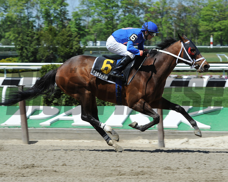 Saginaw wins the 2012 Carr Heaven Stakes.<br /> Coglianese Photos