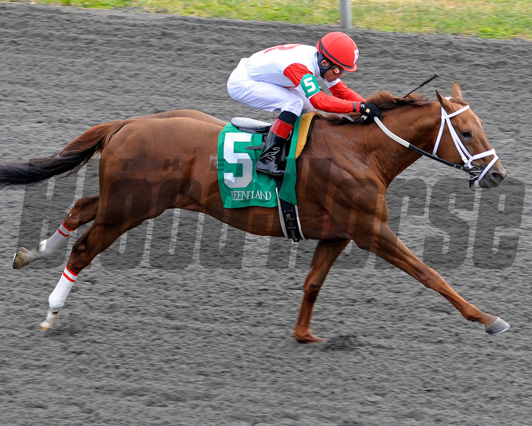 Caption:  <br /> Lonesome Street with Joel Rosario up wins the Commonwealth (gr. II)  on April 14, 2012, at Keeneland in Lexington, Ky.<br /> KEESpring2012 Commonwealth image296<br /> PHoto by Anne M. Eberhardt