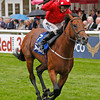 Racing at Newmarket, 13/7/12. The Darley July Cup.<br /> Mayson ridden by Paul Hannigan wins