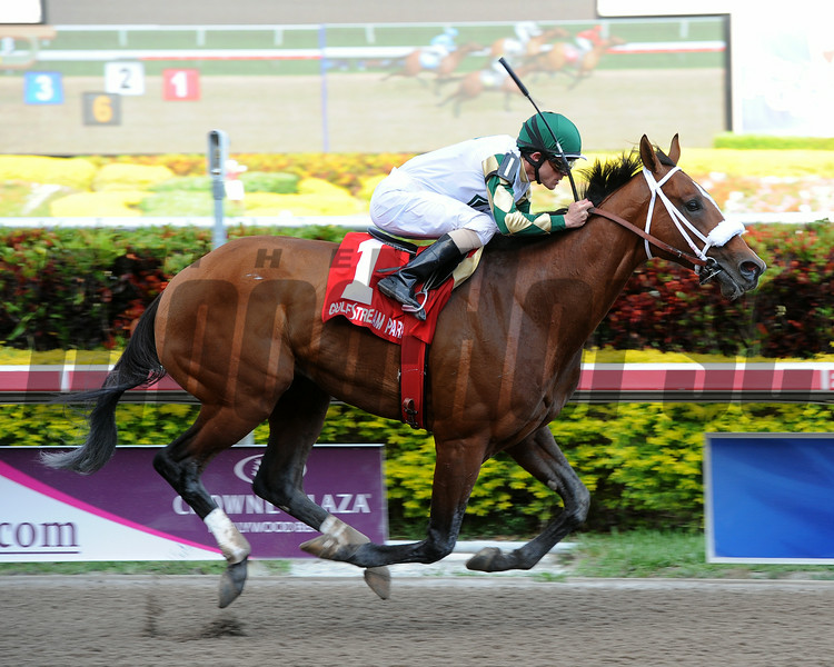 Mucho Macho Man winning the Gulfstream Park Handicap at Gulfstream Park on March 10, 2012<br /> Coglianese Photos