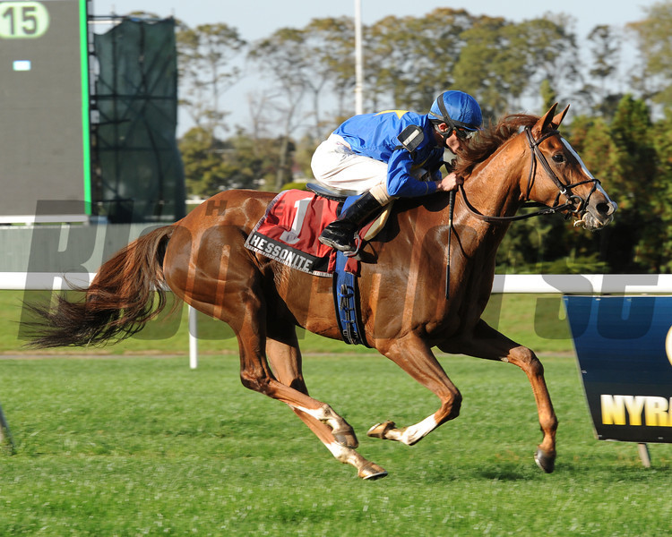 Hessonite wins the 2012 Ticonderoga.<br /> Coglianese Photos/Jessica Hansen