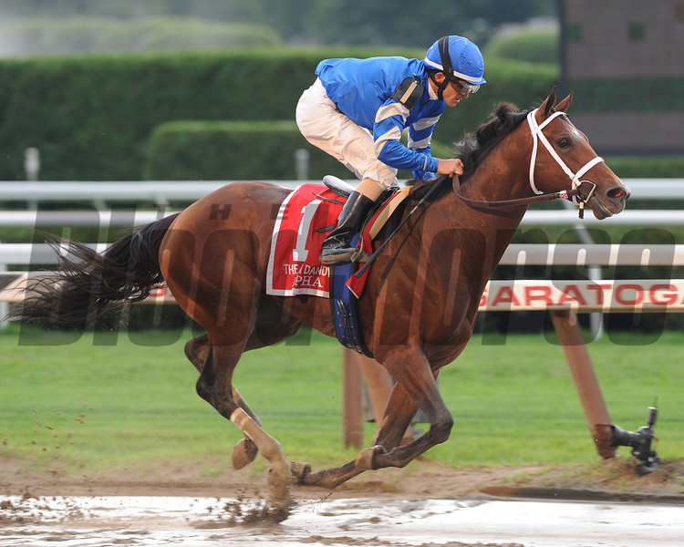 Alpha wins the 2012 Jim Dandy.<br /> Coglianese Photos