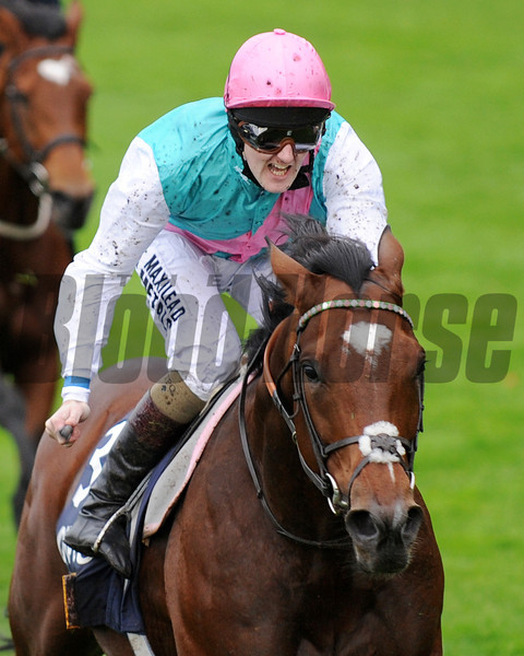 Frankel, Tom Quaelly up, wins  the British Champions Stake, Champions Day, Ascot, England 10/20/12, Photo by Mathea Kelley