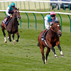 Frankel leads Bullet Train in a racecourse gallop at The Rowley Mile at Newmarket on September 29, 2012.