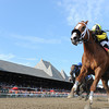 Pacific Ocean wins the 2012 James Marvin.<br /> Coglianese Photos
