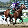 Darwin - Maiden Win, October 6, 2012<br /> Coglianese Photos