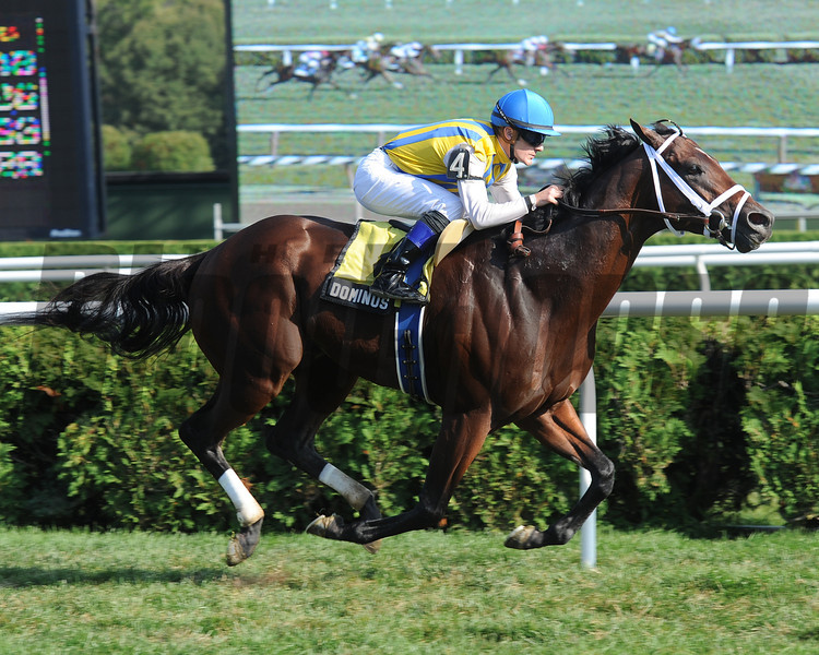 Dominus wins the 2012 Bernard Baruch Handicap (gr. IIT). <br /> Coglianese Photos/Susie Raisher