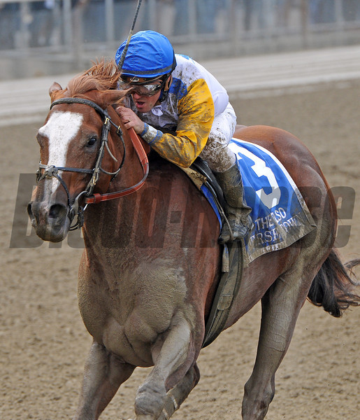 Jersey Town, Javier Castellano up, winning the Gr2 Kelso at Belmont...<br /> © 2012 Rick Samuels/The Blood-Horse