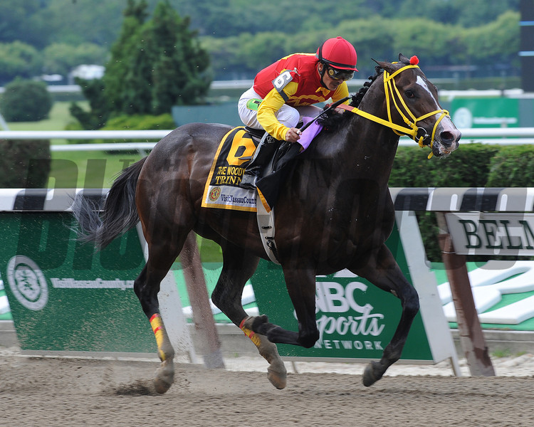 Trinniberg wins the 2012 Woody Stephens<br /> Coglianese Photos