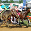 Alternation wins the 2012 Pimlico Special.<br /> Photo by Dave Harmon