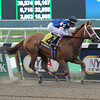 Derwins Star wins the Bed o' Roses Handicap.<br /> Photo by Coglianese Photos