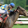 Emma's Encore wins the 2012 Whitney.<br /> Skip Dickstein Photo