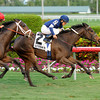Mystic Love wins the 2012 Dania Beach.<br /> Coglianese Photos/Leslie Martin