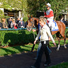 Caption: Data Link with Alex Solis<br /> Wise Dan with Jose Lezcano up wins the Shadwell Turf Mile (gr. I) at Keeneland on Oct. 6, 2012.<br /> Keeneland<br /> ShadwellTurfMile2  image215<br /> Photo by Anne M. Eberhardt