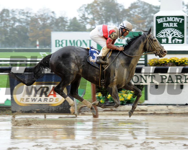 "Hymn Book wins the 2012 Frank ""Pancho"" Martin STakes.<br /> Coglianese Photos"