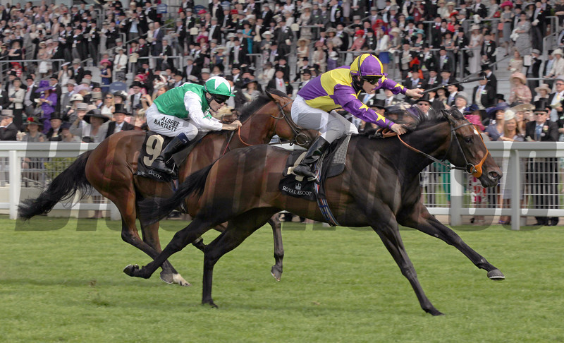 Ceiling Kitty Richard Kingscote up, wins the Queen Mary Stakes, Royal Ascot 2012;  Ascot Race Course; 6/20/02<br /> Photo by Trevor Jones