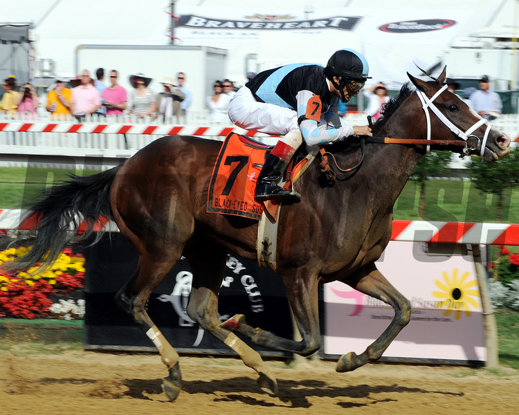 In Lingerie wins the 2012 Black-Eyed Susan.<br /> Photo by Dave Harmon