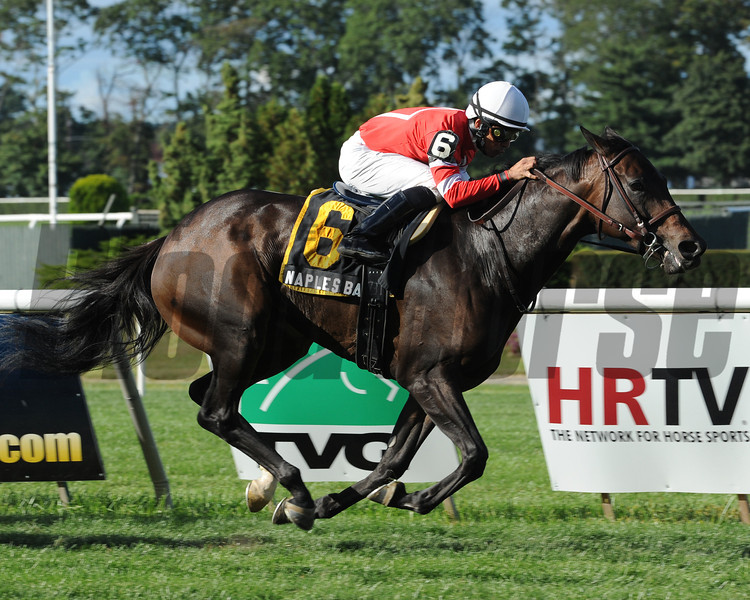 Naples Bay wins the 2012 Noble Damsel.<br /> Photo by Coglianese Photos