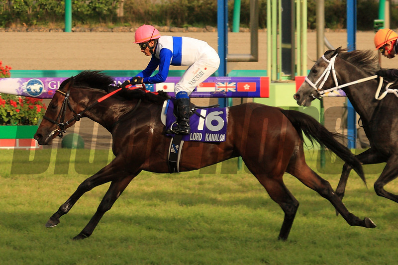 Lord Kanaloa wins the 46th Sprinters Stakes in track record time; 1:06.7<br /> Photo by Naoji Inada