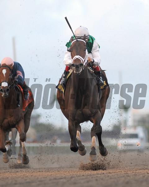 Dust and Diamonds wins the 2012 Sugar Swirl.<br /> Coglianese Photos