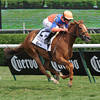 Zagora wins the 2012 Ballston Spa.<br /> Coglianese Photos