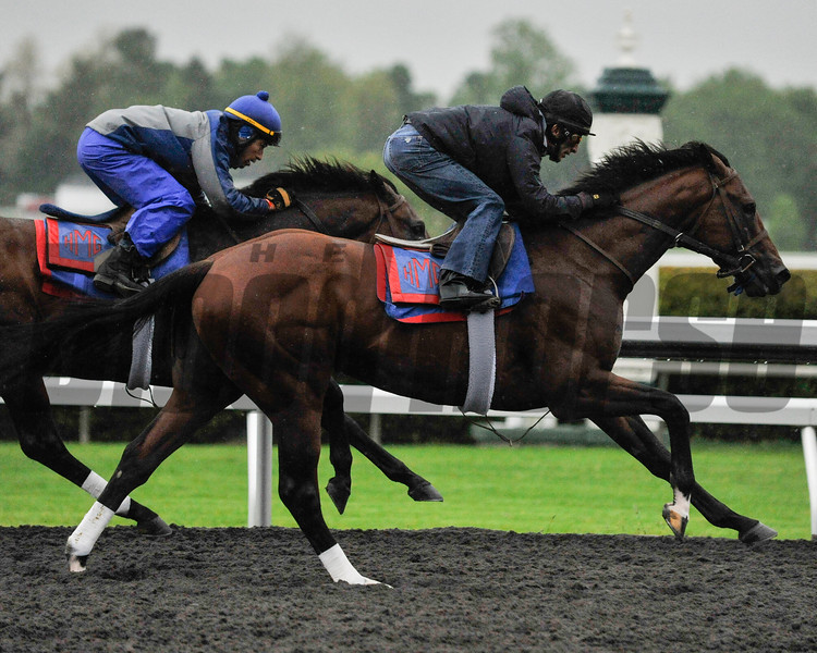 Went The Day Well, under Johnny Velazquez, works in company at Keeneland this morning. The Team Valor colt, trained by Graham Motion, wasn't phased by dreary conditions and rain.<br /> Photo by Mallory Haigh