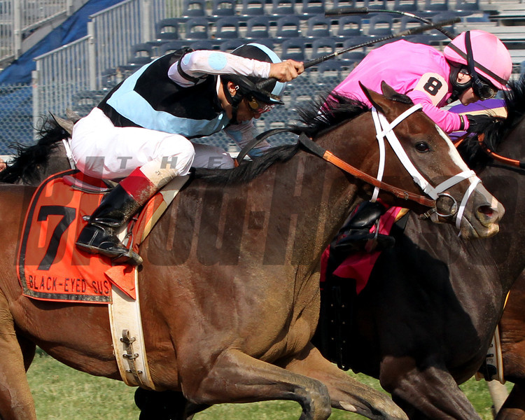 In Lingerie w/John Velazquez up win the 88th Running of The Black Eyed Susan at Pimlico Racecourse on May 18, 2012.<br /> Photo by Chad Harmon