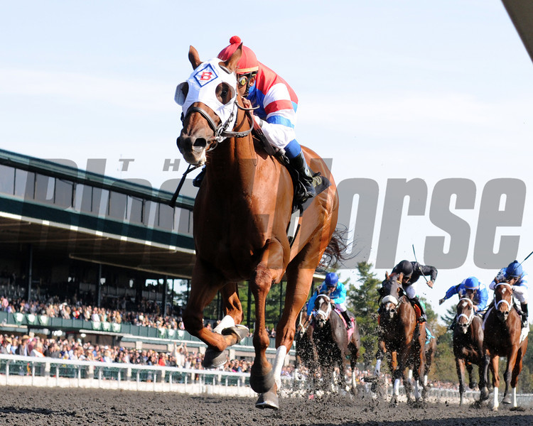 Groupie Doll, Rajiv Maragh up; wins the Thoroughbred Club of Amercia Stakes; , Keeneland Race Track, Lexington, KY 10/6/12 photo by Mathea Kelley
