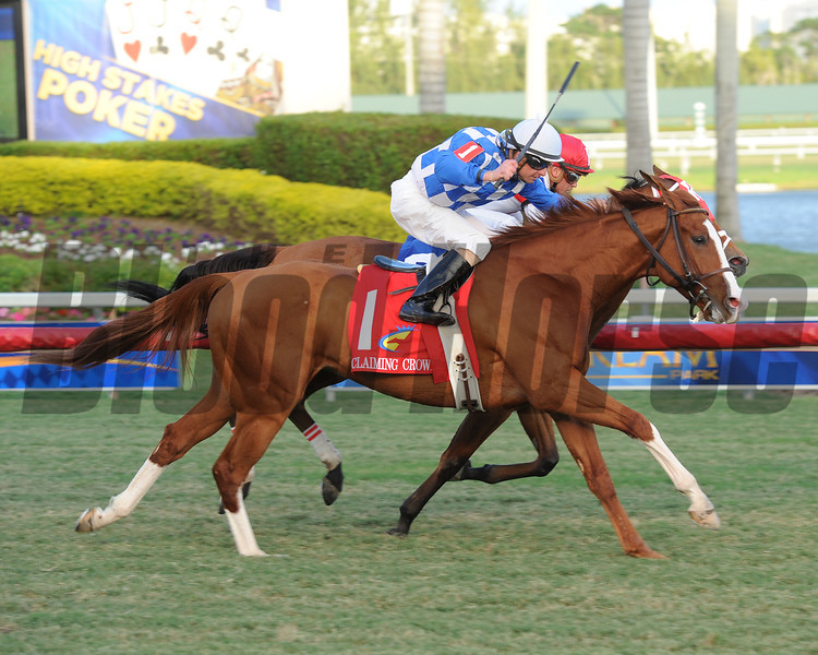 Nikki's Sandcastle wins the 2012 Claiming Crown Emerald.<br /> Coglianese Photos