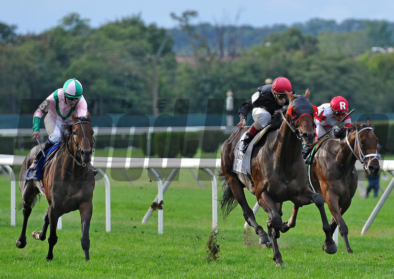 Point Of Entry, John Velazquez up, holds off Treasure Beach (L) and Kindergarten Kid, to win the Gr1 Joe Hirsch Turf Classic at Belmont...<br /> Shug McGaughey trains the winner.<br /> © 2012 Rick Samuels/The Blood-Horse