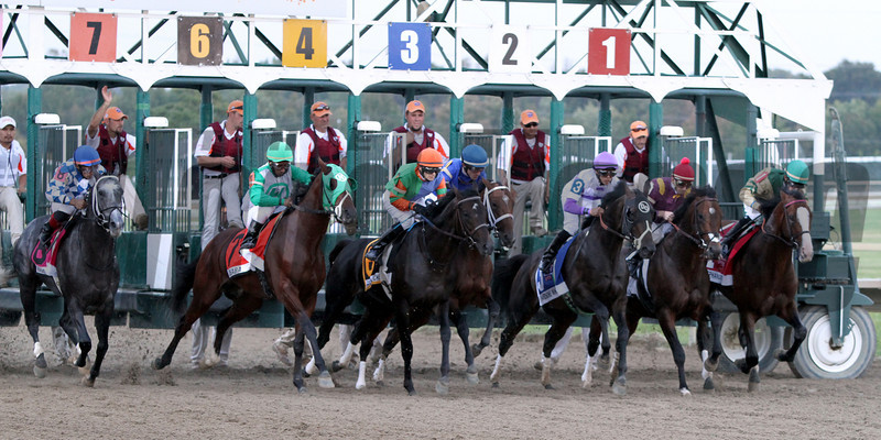 The field for the 33rd Running of the Pennsylvania Derby (GII) leave the starting gate at Parx on September 22, 2012.<br /> Photo by Chad B. Harmon