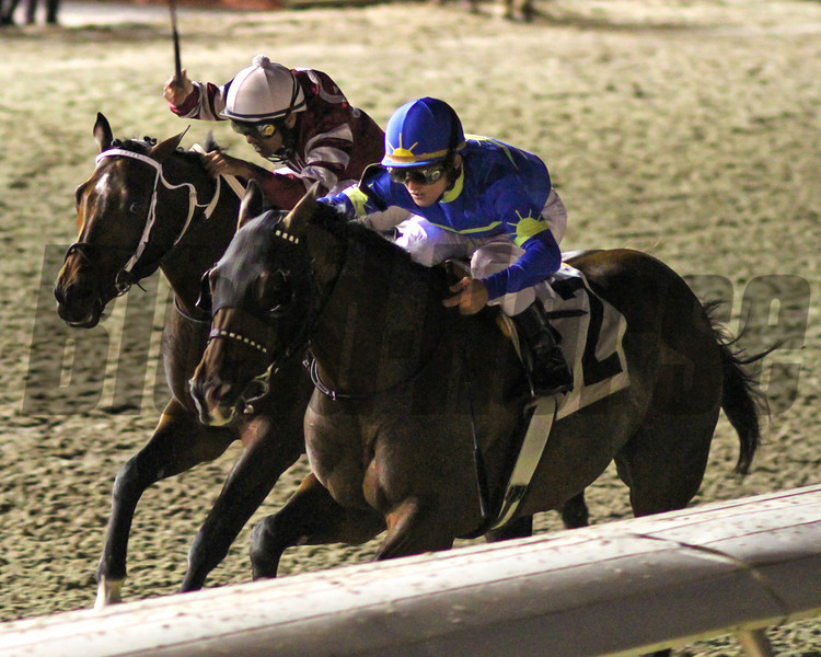 12/15/2012  -  Hurricane Ike with jockey James Graham (blue cap) aboard  takes the inside rail in route to victory in the 48th running of the Tenacious Handicap at Fair Grounds. Brethren ridden by Shaun Bridgmohan (white cap) finished second.  <br /> Hodges Photography / Lynn Roberts