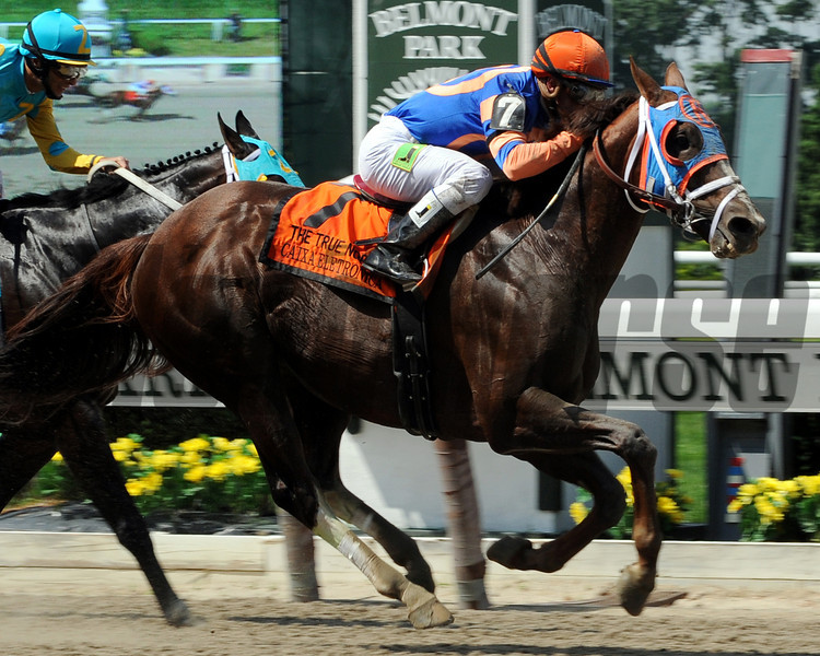 Caixa Eletronica WINNING THE TRUE NORTH STAKES ON BELMONT DAY.