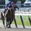 Saginaw wins the 2012 Affirmed Success.<br /> Coglianese Photos