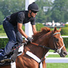 Kentucky Derby and Preakness winner I'll Have Another, and exercise rider Humberto Gomez.<br /> Belmont, Saturday morning, May 26th.<br /> Photo by Rick Samuels