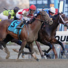 Overanalyze wins the 2012 Remsen.<br /> Coglianese Photos/Jessica Hansen