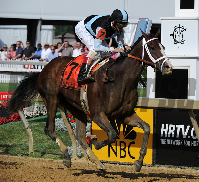 In Lingrie, John Velazquez up wins the black Eyed susan Pimlico Race Track, Baltimore, MD 5/18/12, Photo by Mathea Kelley